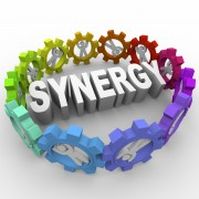 Synergy - People in Gears Around Word